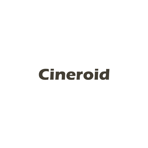 Cineroid Softbox Kit with Two FL800 Panels by Cineroid
