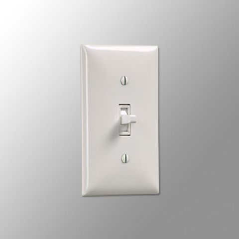 Draper 121102 Wall Switch SS-1R (White), White, 110 V by Draper