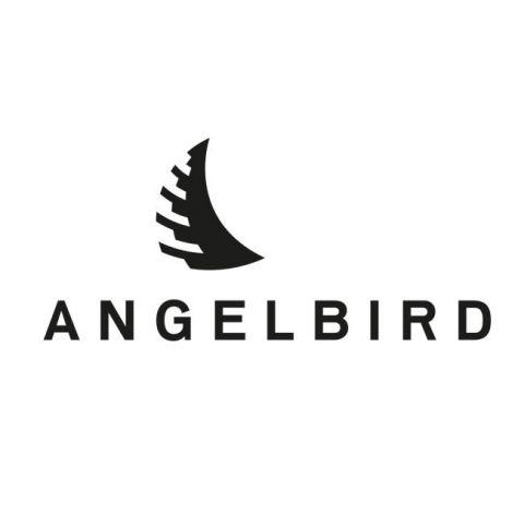 Angelbird MP-EVA1-256SDX2 Match Pack for Panasonic EVA1 256GB | 2 PACK by Angelbird